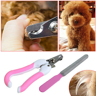 2 Size Pet Dog Cat Nail Claw Clippers Trimmer Scissors + Grooming Cutter Filer