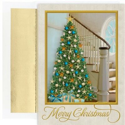 COASTAL TREE 18 pack Boxed Christmas Cards 919100 2018