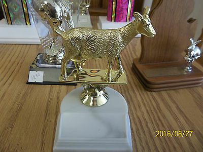 """Goat trophy, award, about 4"""" high, includes engraving, 4H, State Fair"""