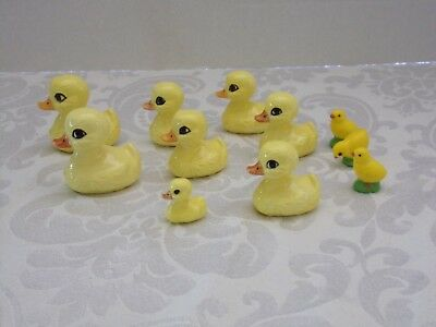 11 Ceramic Duck's / Chicks