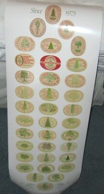 NEW Anchor Steam Brewery Special Christmas Ale Tree Labels Poster From 1975-2010