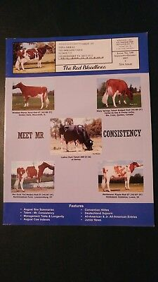 """The Red & White Holstein Bloodlines 2007 Sire Issue + """"talent"""" & """"redman"""" Storys"""