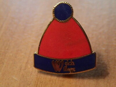 SKI RESORT HAT PIN-Souvenir/Travel/Snowboard/Skiing-WELCH VILLAGE, MINNESOTA