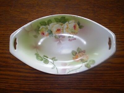 Beautiful Bavarian Hand Painted Dish