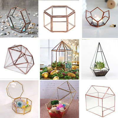 Glass Geometric Terrarium Jewelry Box Tabletop Succulent Planter Jewelry Boxes