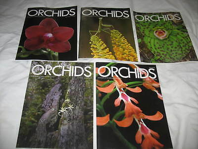 Orchids: the Magazine of the American Orchid Society  lot of 13 2009 2010,12,13