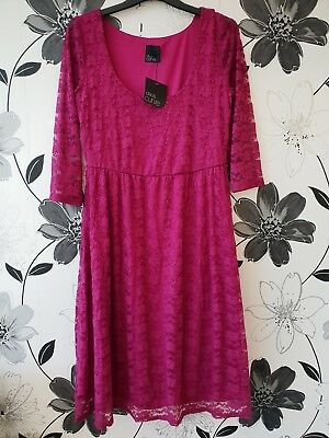Lace Dress Size 18 ASOS Curve Pink/Purple New With Tags