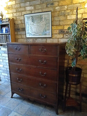 19th Century Antique Regency Style Oak 2 over 4 Chest of Drawers