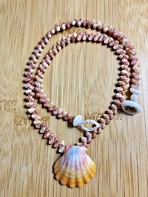 16 inches long, kahelelani shell necklace with sunrise shell from Hawaii