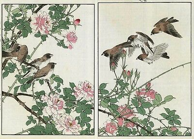 1892 Orig JAPANESE Diptych WOODBLOCK PRINT KEINEN Bird & Flower  Sparrows