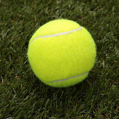 0320 Court Tennis Ball Durable Round Training Learning Sports Exercise Adults