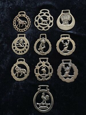Lot of 10 Brass Horse Harness Bridal Tack Medallions - Various Designs