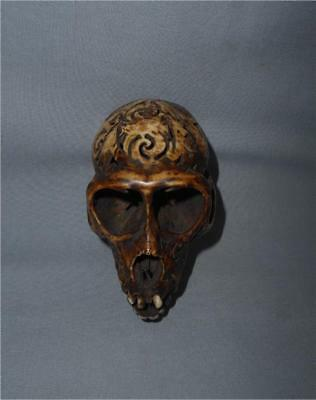 Antique Indonesia Borneo TOP AGED USED DAYAK TRIBE DECORATED MONKEY SKULL TROPHY