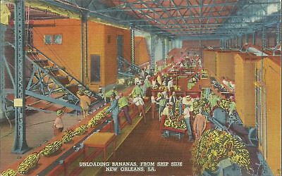 Old Vintage Unloading Bananas From Ship In New Orleans Louisiana Linen Postcard