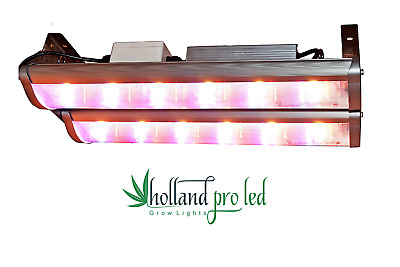 Holland Pro LED Grow Lampe Money Maker 60cm Grow BAR Bridgelux COB u. Mean Well