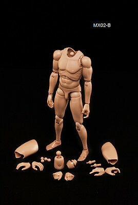 1/6 Scale Male Body Series w/Highly Cost-Effective Edge MX02-B