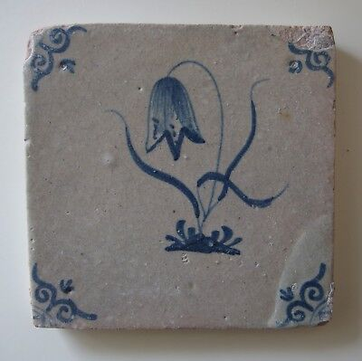 "17th Century DUTCH DELFT TILE ""HANGING TULIP"""