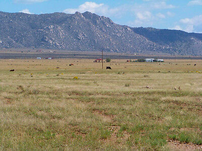 "Rare 5 Acre New Mexico Ranch ""tierra Valley""! Near Power! Cash Sale! No Reserve!"