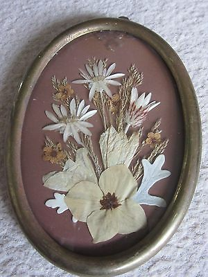 Rare Antique Romantic 'Forget Me Not' Pressed Flower Brass Framed Picture