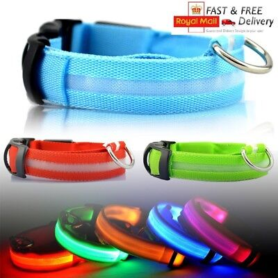 LED Flashing Luminous LIGHT UP BRIGHT Safety Dog Collar *UK STOCK*