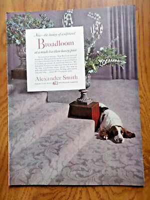 1952 Alexander Smith Bradloom Carpets Ad   Brittiany Dog