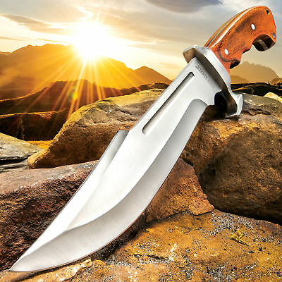 "15"" Wood Hunting Survival Skinning Fixed Blade Knife Full Tang Army Bowie"