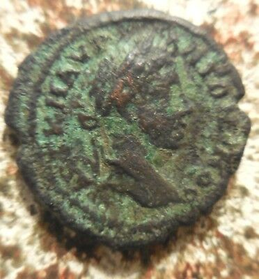 VF: Elagabalus of Marcianopolis, Grapes! Ex Heritage Auction of Old Estate: