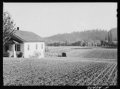 Willamette Valley,Oregon,OR,Clackamas County,Farm Security Administration,FSA,4