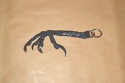 Genuine Claw Keyring with Brass ring  NECKLACE,WEIRD,PAGAN,GOTHIC.