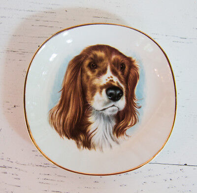 "Vintage Weatherby Hanley England Royal Falcon Ware Spaniel Dog 5"" Plate Dish"