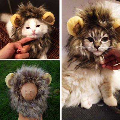 Cute Pet Costume Cosplay Lion Mane Wig Cap Hat for Cat Halloween Xmas Clot