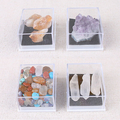 Mixed Natural Rough Stones Raw Rose Quartz Crystal Mineral Rocks Collection SD9