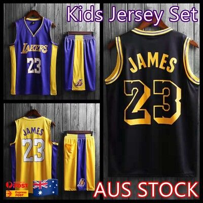 online retailer 7c7b3 a6000 LEBRON JAMES #23 LA Lakers Kids Children's Youth NBA Basketball Jersey