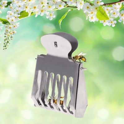 1PC Stainless Steel Clip Clamp Queen Bee Catcher Beekeeping Catching Tool