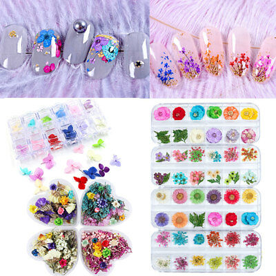 Real Dry Dried Flowers 3D Nail Decorations for UV Gel Polish DIY  Decor