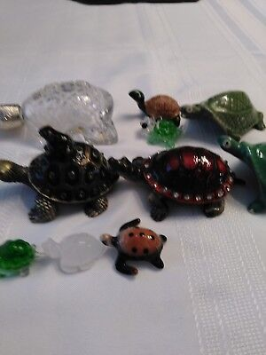 Lot Of 10 Turtle