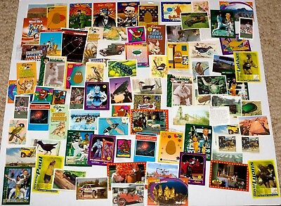 Collector Card Bulk Lot - Mainly 1990s-2000s - Approx. 80 including MIP