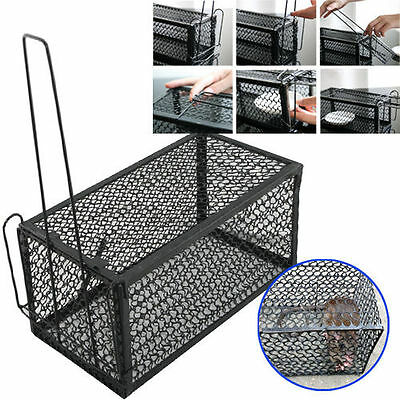 2x Rat Catcher Cage Trap Humane Large Live Animal Rodent Indoor Outdoor Uk Stock
