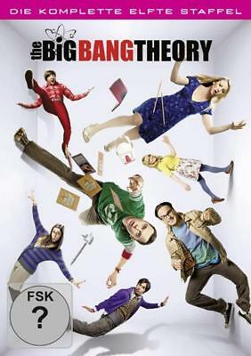 The Big Bang Theory - Staffel 11  [2 DVDs]