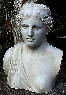 Sculpture Statue Bust of Ancient Olympian Greek Goddess Aphrodite. 60 cm.