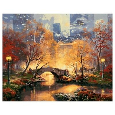 16X20inch Paint By Number Kit DIY Digital Oil Acrylic Painting on Canvas Ho S4J1