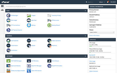 cPanel Web Hosting Account - 10gb SSD Disk, 100gb B/W - 1 year for only £0.99
