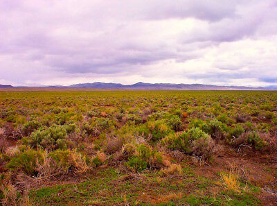 "Rare 140 Acre Oregon Ranch ""steens Mountain Valley""! Cash Sale! No Reserve!"