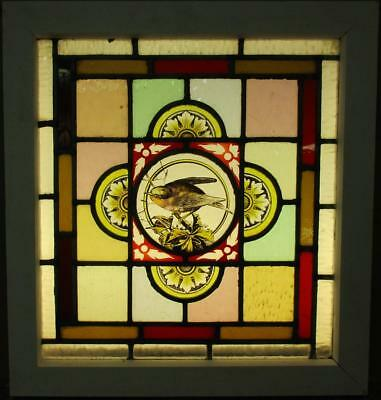 "VICTORIAN ENGLISH LEADED STAINED GLASS WINDOW Handpainted Bird 17.5"" x 18.5"""