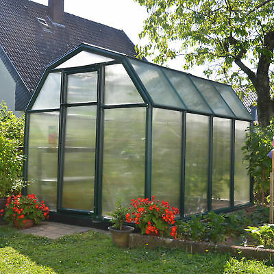 Rion Greenhouses EcoGrow 2 Twin Wall 6 Ft. W x 8 Ft. D Greenhouse