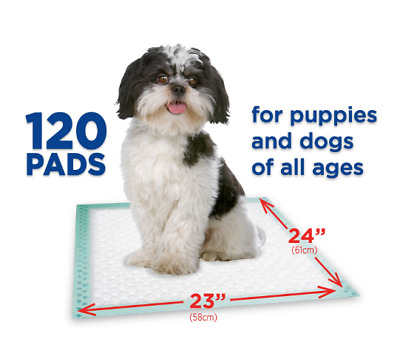 120ct - NEW Dog Puppy 23x24 Pet Housebreaking Pad, Pee Training Pads,  Underpads