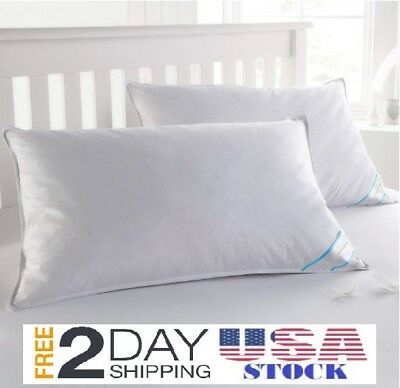 Feather Goose Soft Down Bed Pillow Set of 2 Pillows Cotton Cover- STANDARD