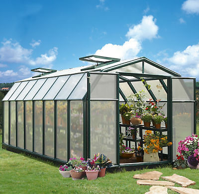 Rion Greenhouses Hobby Gardener 2 Twin Wall 8 Ft. W x 16 Ft. D Greenhouse
