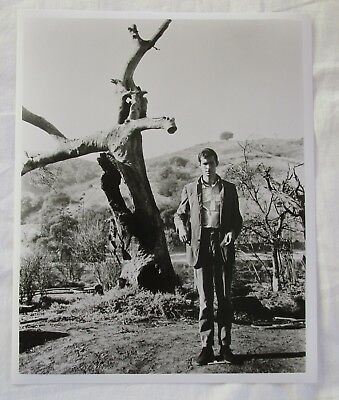 "Anthony Perkins PSYCHO Norman Bates Black & White Photograph Photo 10"" x 8"""