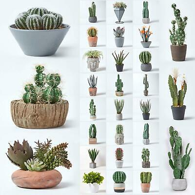 Artificial Succulent Plant Cactus/Cacti in Decorative Pot For Home/Office Décor